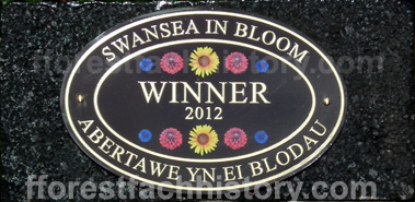 Swansea in Bloom Winner 2012
